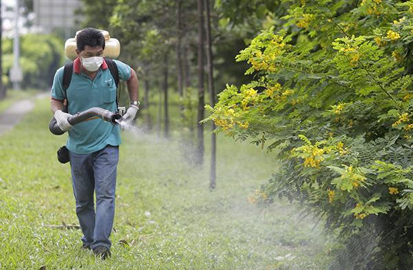 [新聞] 新加坡82人感染寨卡多國發警示國內旅行社照常發團